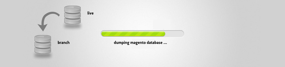 Quicker Dumping of a Magento MySQL Database for Branching